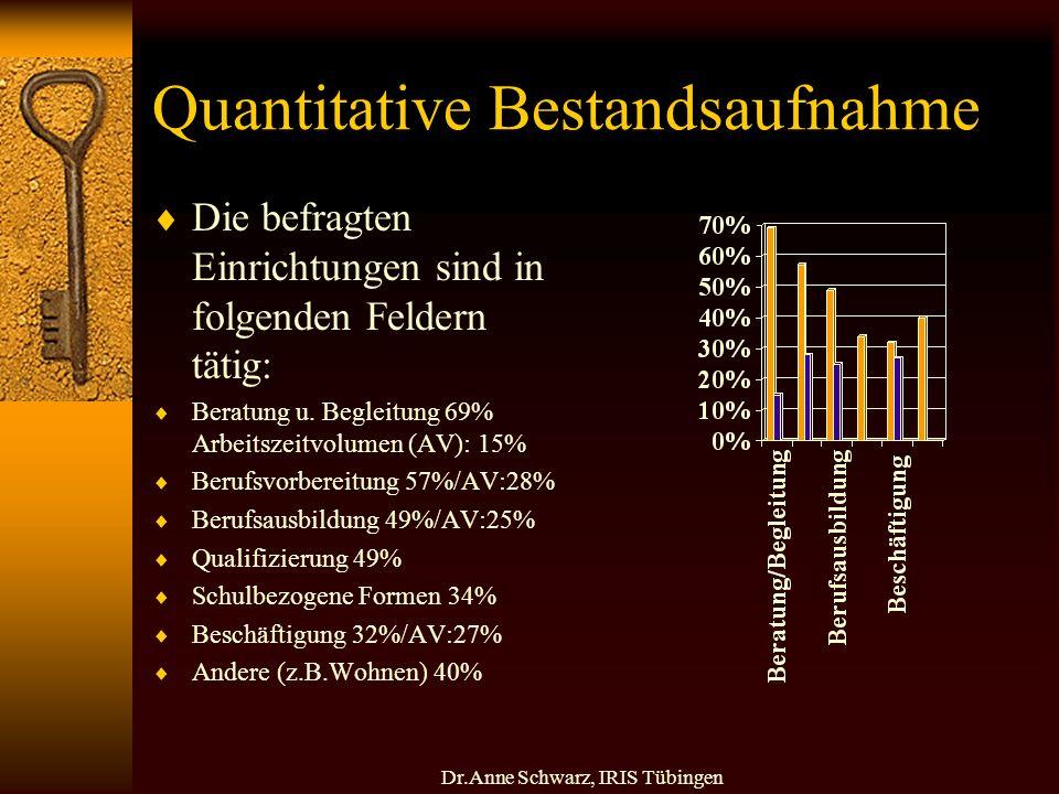 Dr.Anne Schwarz, IRIS Tübingen Quantitative Bestandsaufnahme Die befragten Einrichtungen sind in folgenden Feldern tätig: Beratung u.