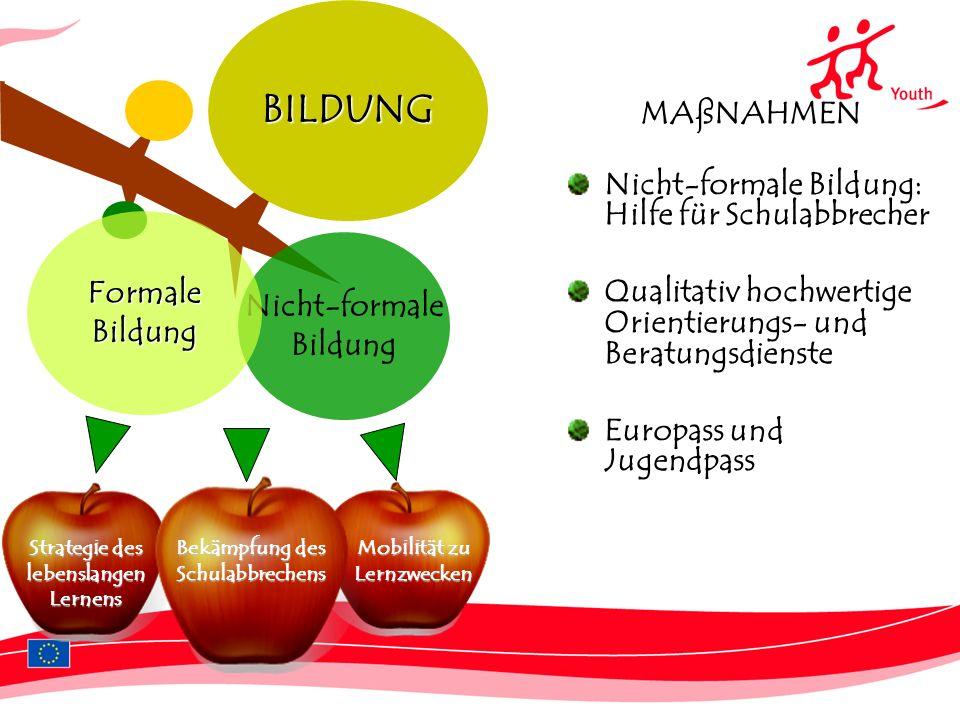 4 MAßNAHMEN Nicht-formale Bildung: Hilfe für Schulabbrecher Qualitativ hochwertige Orientierungs- und Beratungsdienste Europass und JugendpassBILDUNG Strategie des lebenslangen Lernens Mobilität zu Lernzwecken Nicht-formale Bildung FormaleBildung Bekämpfung des Schulabbrechens