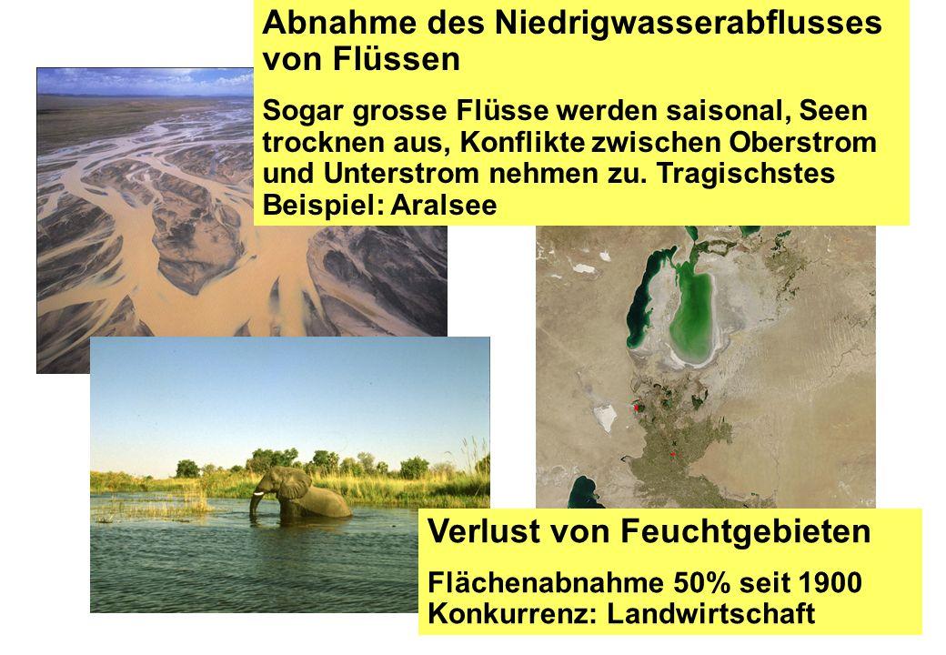 Verlust von Feuchtgebieten Flächenabnahme 50% seit 1900 Konkurrenz: Landwirtschaft Abnahme des Niedrigwasserabflusses von Flüssen Sogar grosse Flüsse