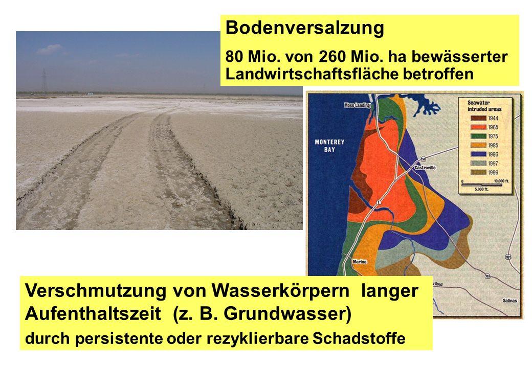 Bodenversalzung 80 Mio. von 260 Mio. ha bewässerter Landwirtschaftsfläche betroffen Verschmutzung von Wasserkörpern langer Aufenthaltszeit (z. B. Grun