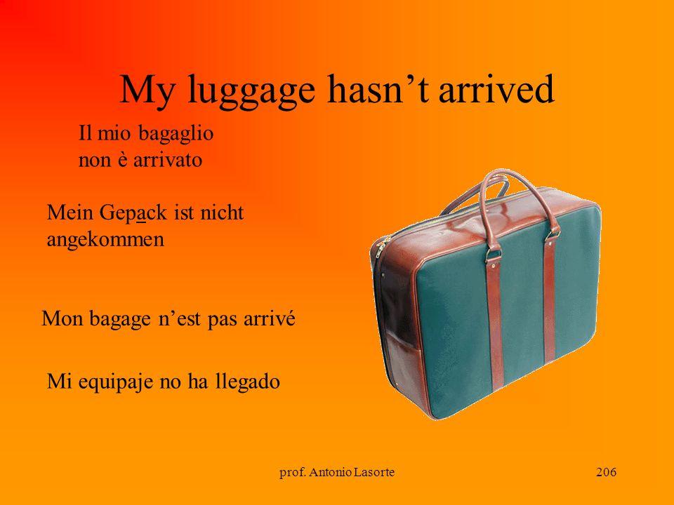 prof. Antonio Lasorte206 My luggage hasnt arrived Il mio bagaglio non è arrivato Mon bagage nest pas arrivé Mein Gepack ist nicht angekommen Mi equipa
