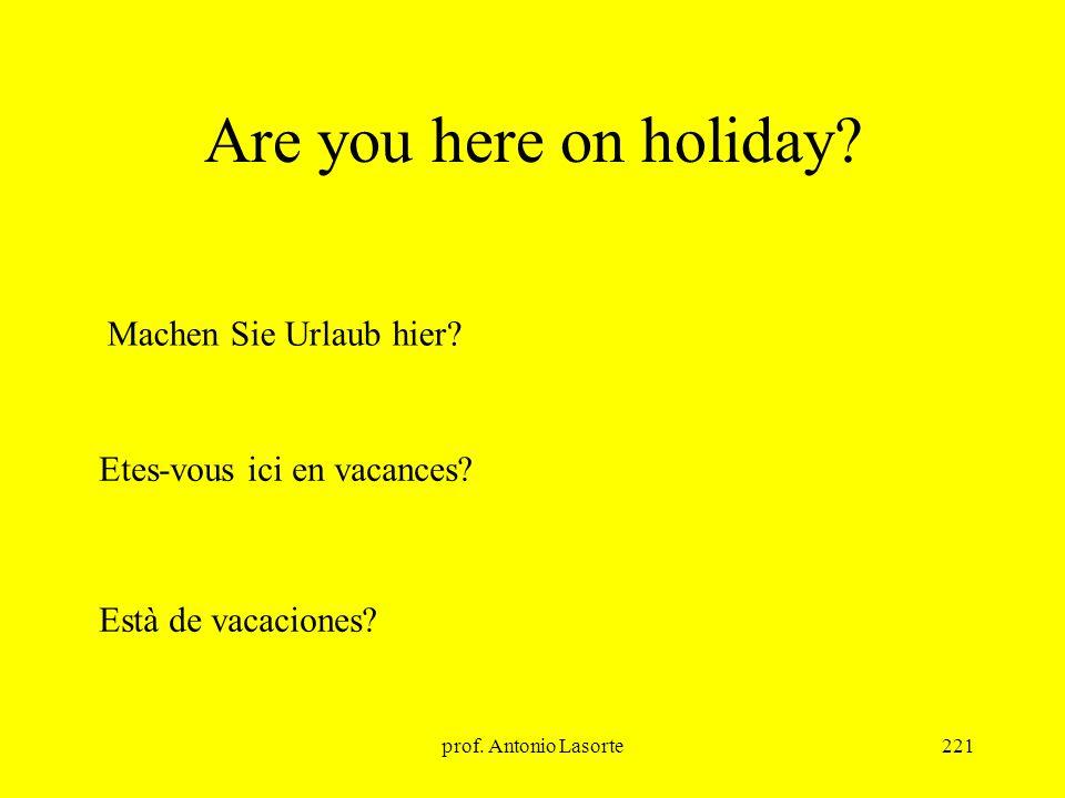 prof.Antonio Lasorte221 Are you here on holiday. Etes-vous ici en vacances.