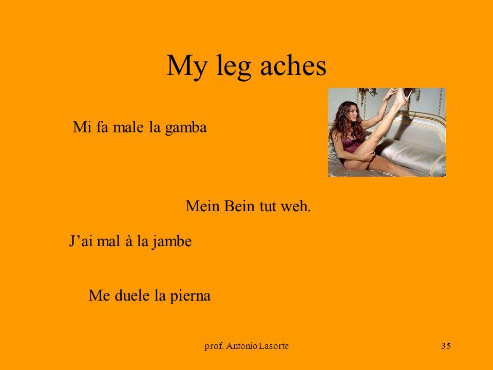 prof. Antonio Lasorte35 My leg aches Mein Bein tut weh. Mi fa male la gamba Jai mal à la jambe Me duele la pierna
