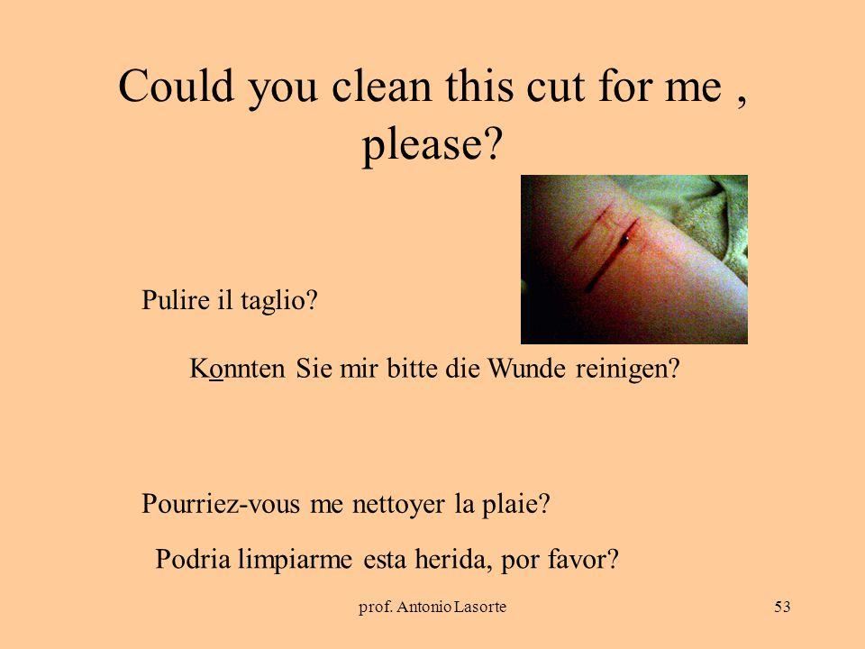 prof. Antonio Lasorte53 Could you clean this cut for me, please? Konnten Sie mir bitte die Wunde reinigen? Pulire il taglio? Pourriez-vous me nettoyer