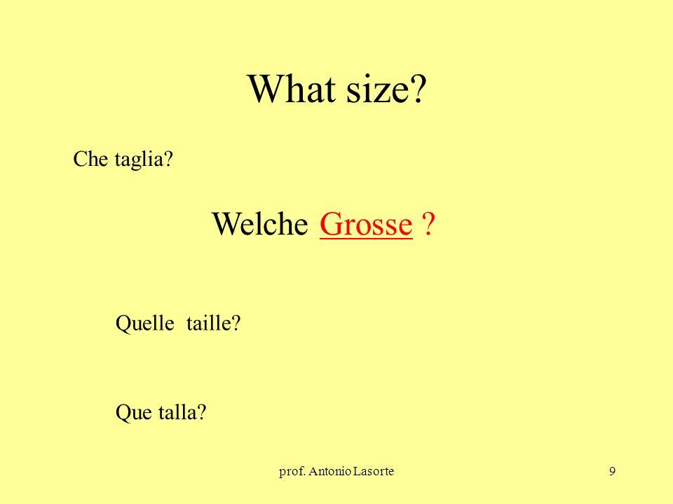 prof. Antonio Lasorte9 What size? Welche Grosse ? Che taglia? Quelle taille? Que talla?
