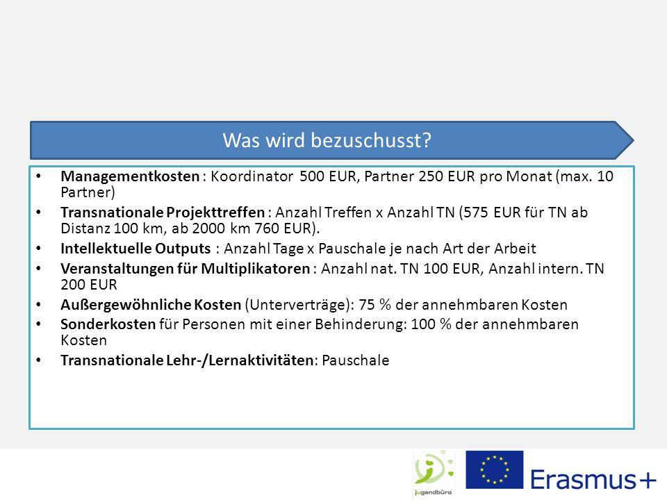 Managementkosten : Koordinator 500 EUR, Partner 250 EUR pro Monat (max.