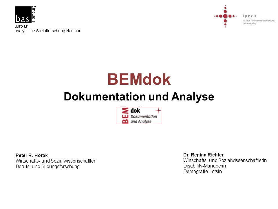 BEMdok Dokumentation und Analyse Toolbox Peter R. Horak Wirtschafts- und Sozialwissenschaftler Berufs- und Bildungsforschung Dr. Regina Richter Wirtsc