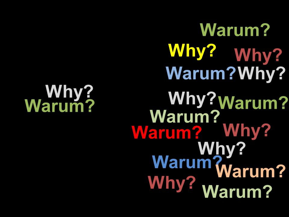Why? Warum? Why? Warum? Why? Warum? Why? Warum? Why? Warum?