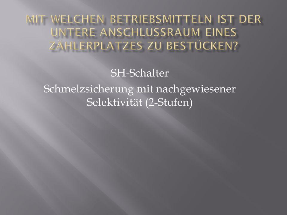 SH-Schalter Schmelzsicherung mit nachgewiesener Selektivität (2-Stufen)