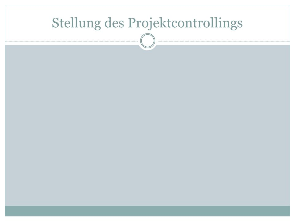Stellung des Projektcontrollings
