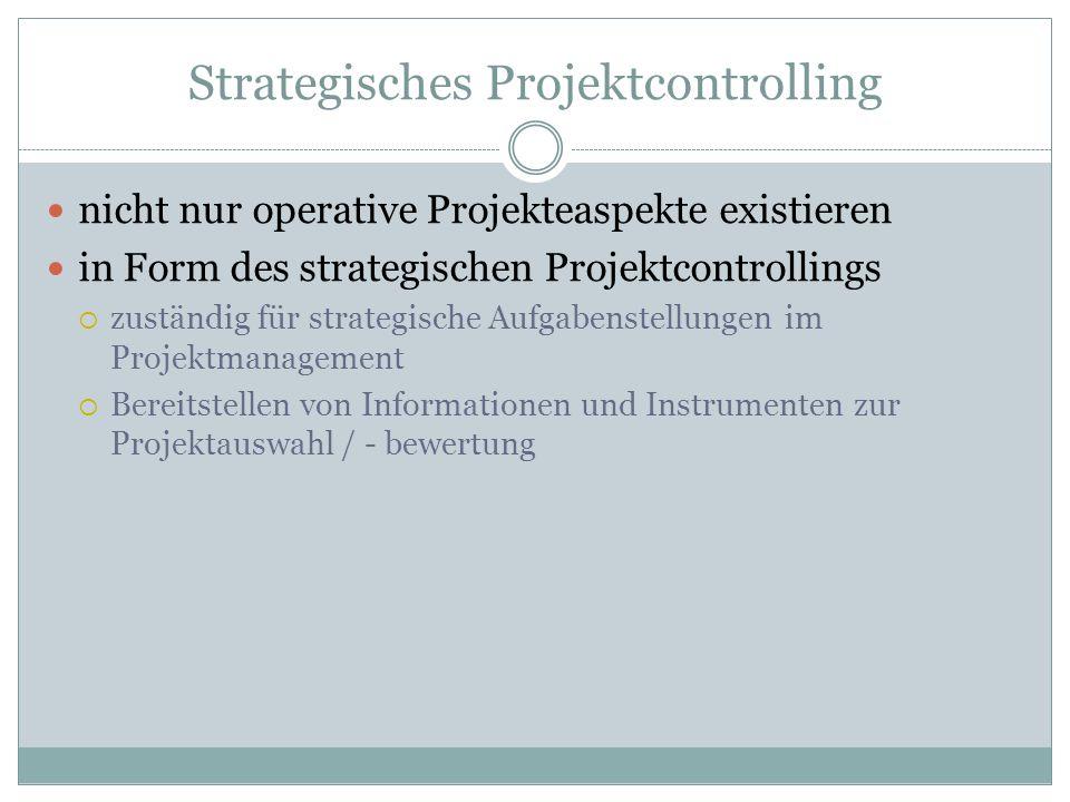 Strategisches Projektcontrolling nicht nur operative Projekteaspekte existieren in Form des strategischen Projektcontrollings zuständig für strategisc