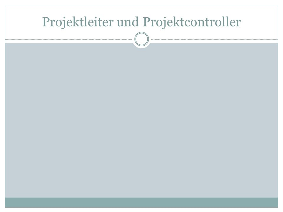 Strategisches Projektcontrolling