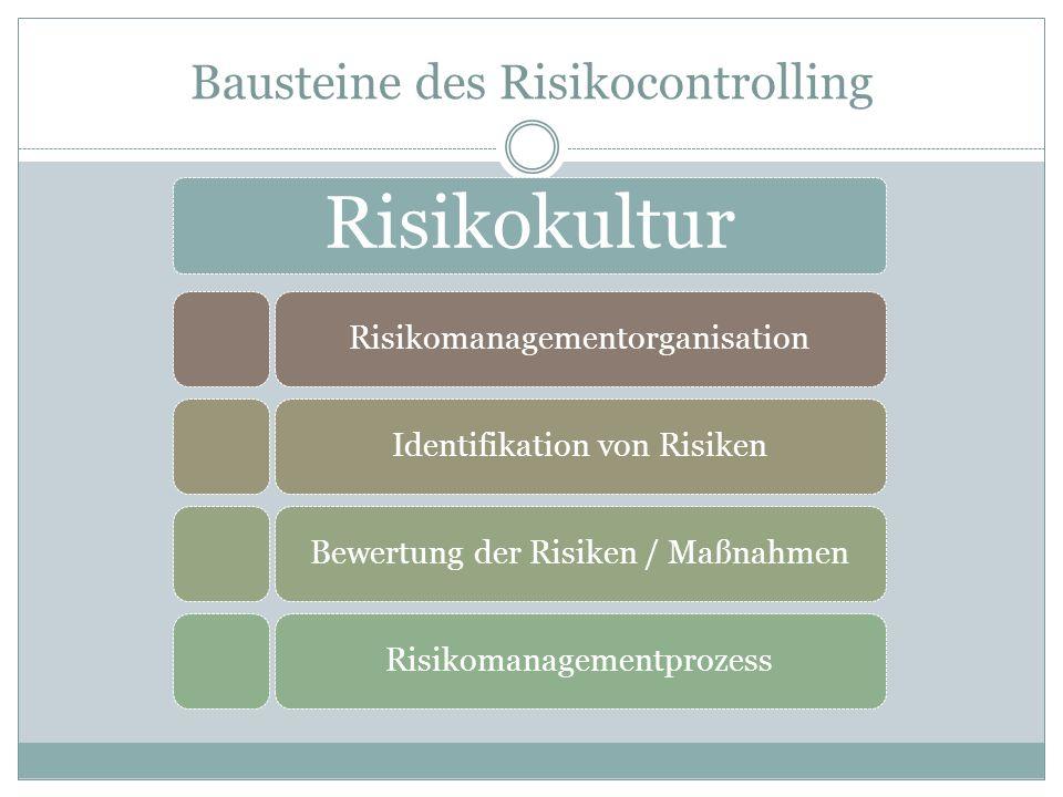 Bausteine des Risikocontrolling Risikokultur RisikomanagementorganisationIdentifikation von RisikenBewertung der Risiken / MaßnahmenRisikomanagementpr