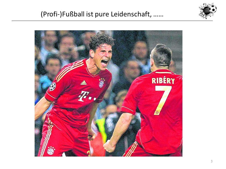 16.05.20143 (Profi-)Fußball ist pure Leidenschaft, ……