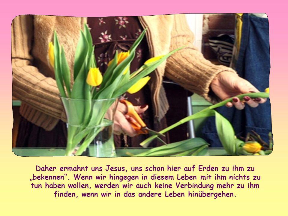 Ihm liegt daran, dass wir für immer bei Gott leben. Darauf und nur darauf kommt es ihm an. Das ist das Ziel, für das wir ins Dasein gerufen wurden; de