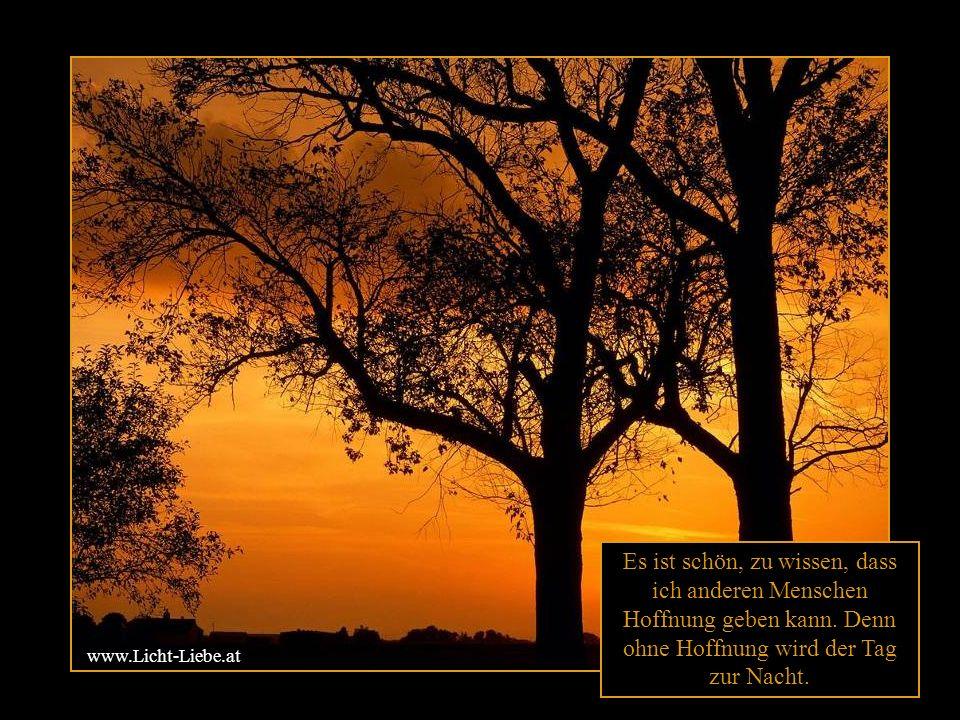 Hoffnung ist die kleine Flamme, die mit ihrem Licht die Dunkelheit durchdringt.