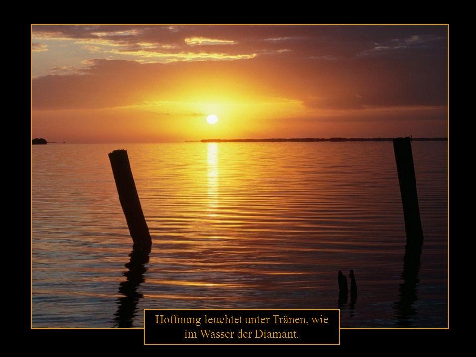 Jeder Hoffnung Anfang gleicht dem ersten Sonnenstrahl, und das Ende aller Hoffnung ist der Anfang aller Qual.
