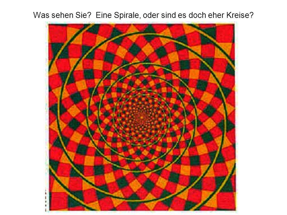 Was sehen Sie? Eine Spirale, oder sind es doch eher Kreise?