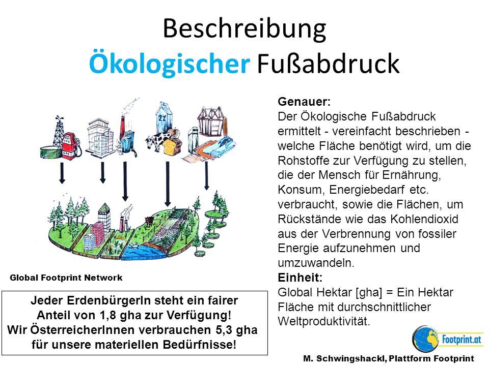 Beschreibung Ökologischer Fußabdruck M.