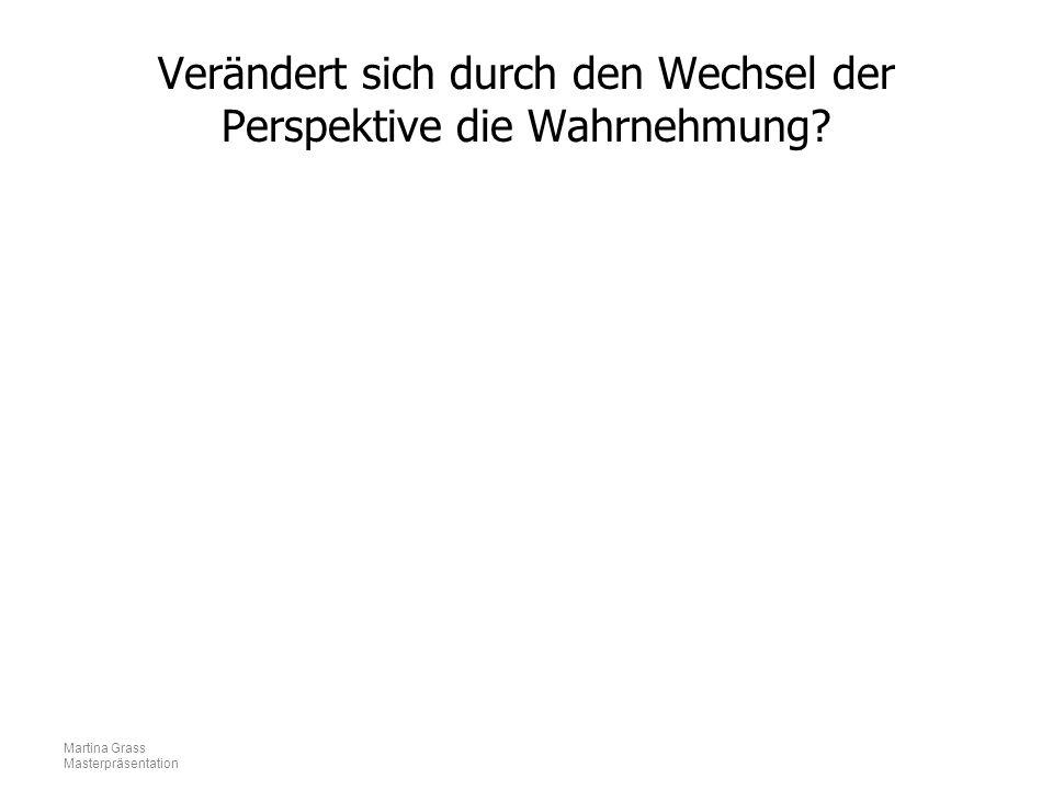 Martina Grass Masterpräsentation Verändert sich durch den Wechsel der Perspektive die Wahrnehmung?