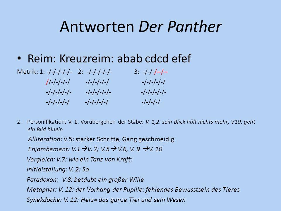 Antworten Der Panther Reim: Kreuzreim: abab cdcd efef Metrik: 1: -/-/-/-/-/- 2: -/-/-/-/-/- 3: -/-/-/--/-- //-/-/-/-/ -/-/-/-/-/ -/-/-/-/-/ -/-/-/-/-/