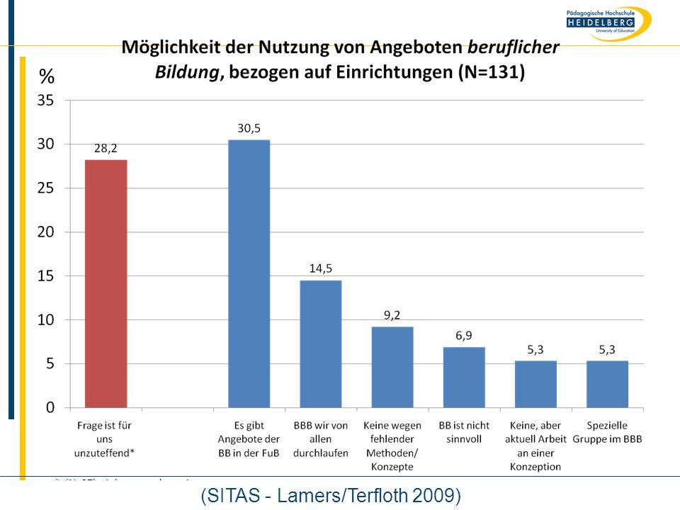 Name % * (N=37), siehe gesonderte Auswertung (SITAS - Lamers/Terfloth 2009)