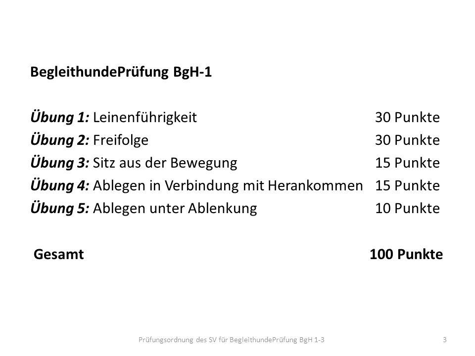 BegleithundePrüfung BgH-1 Übung 1: Leinenführigkeit30 Punkte Übung 2: Freifolge30 Punkte Übung 3: Sitz aus der Bewegung 15 Punkte Übung 4: Ablegen in