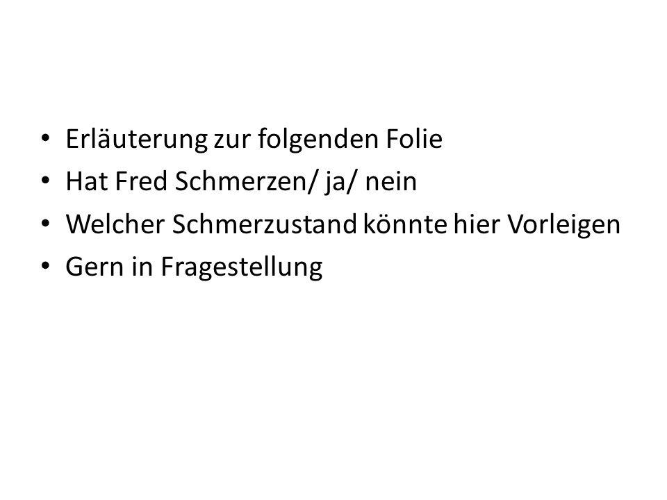 Erläuterung zur folgenden Folie Hat Fred Schmerzen/ ja/ nein Welcher Schmerzustand könnte hier Vorleigen Gern in Fragestellung