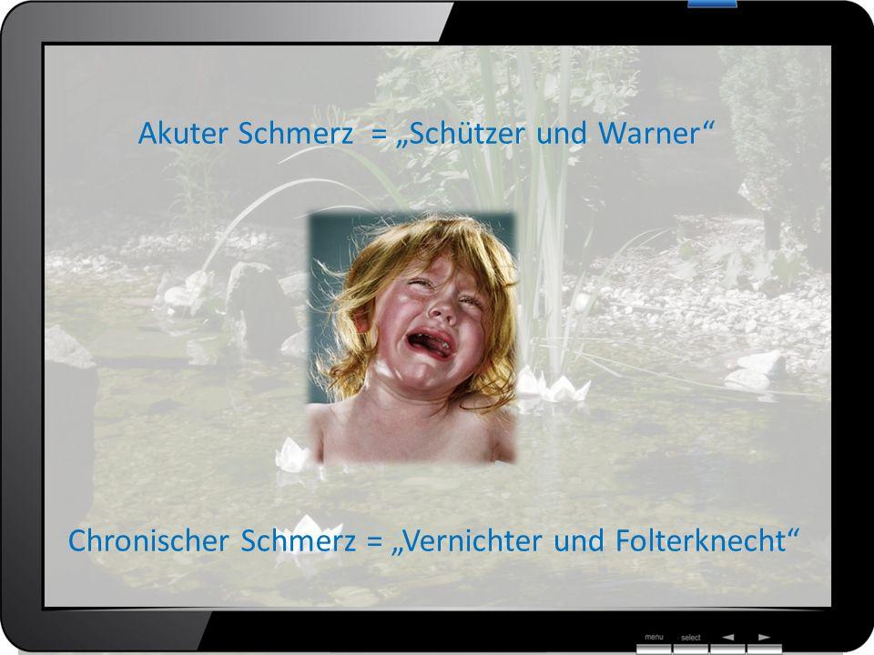 Akuter Schmerz = Schützer und Warner Chronischer Schmerz = Vernichter und Folterknecht