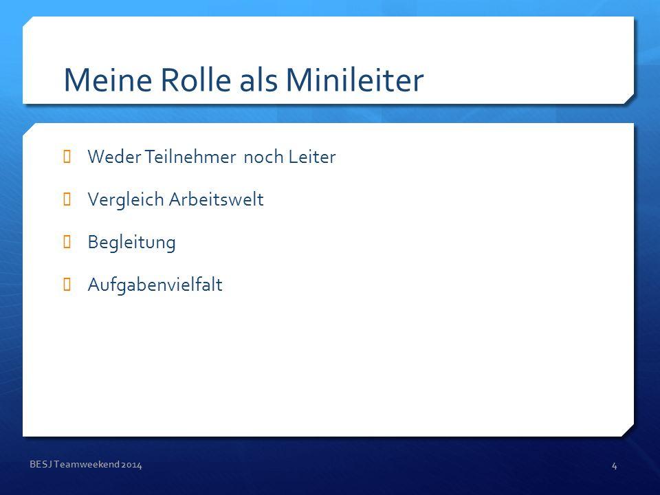 Meine Rolle als Minileiter Weder Teilnehmer noch Leiter Vergleich Arbeitswelt Begleitung Aufgabenvielfalt BESJ Teamweekend 20144
