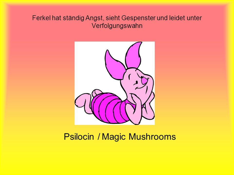 Ferkel hat ständig Angst, sieht Gespenster und leidet unter Verfolgungswahn Psilocin / Magic Mushrooms