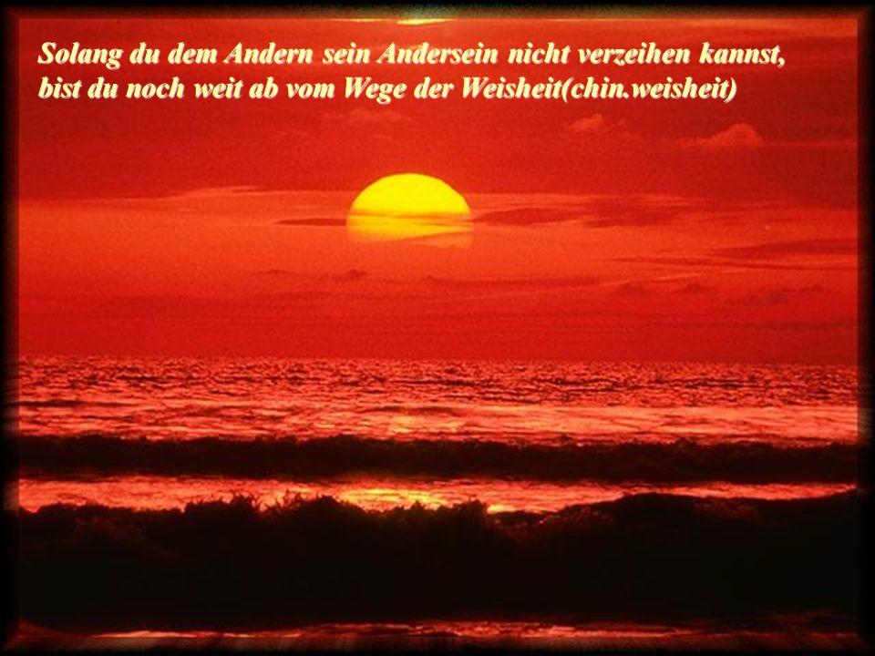 Suche nicht nach dem Sinn des Lebens, GIB IHM EINEN!!!