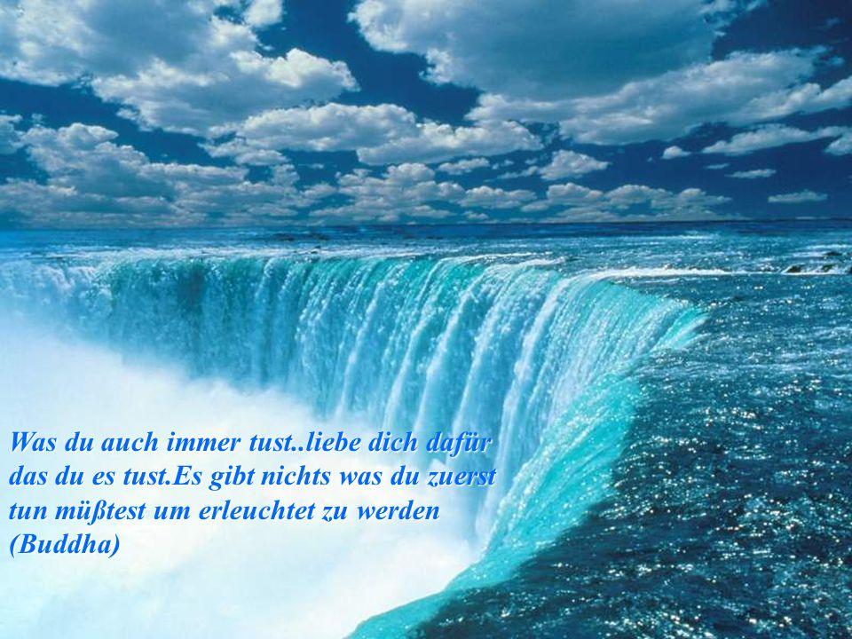 Solang du dem Andern sein Andersein nicht verzeihen kannst, bist du noch weit ab vom Wege der Weisheit(chin.weisheit)