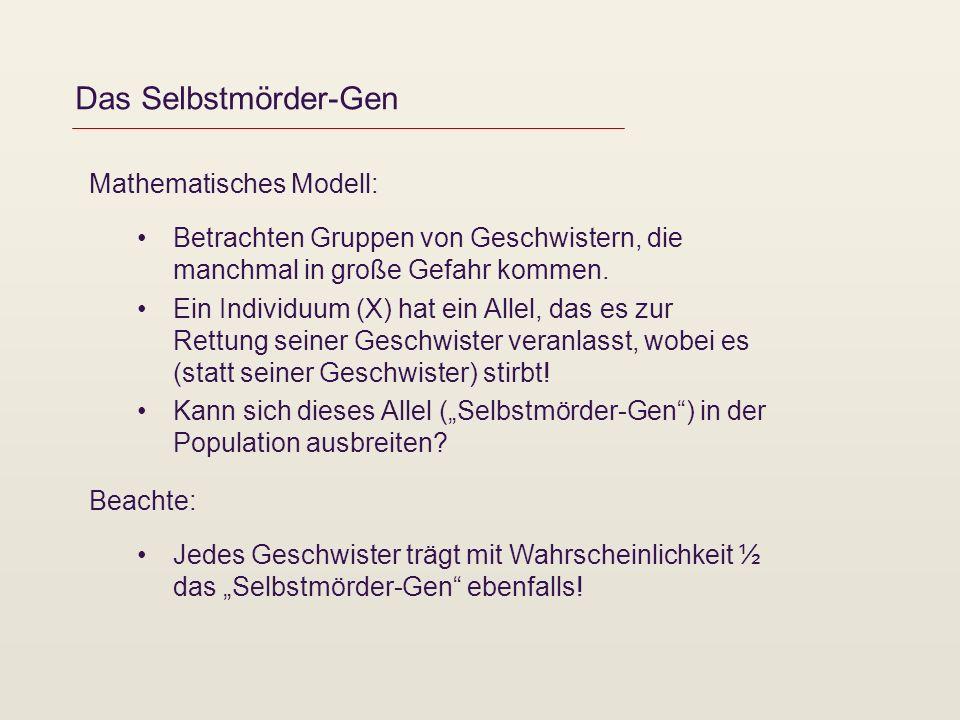 Das Selbstmörder-Gen Mathematisches Modell: Betrachten Gruppen von Geschwistern, die manchmal in große Gefahr kommen. Ein Individuum (X) hat ein Allel