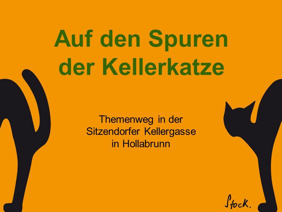 Themenweg in der Sitzendorfer Kellergasse in Hollabrunn Auf den Spuren der Kellerkatze