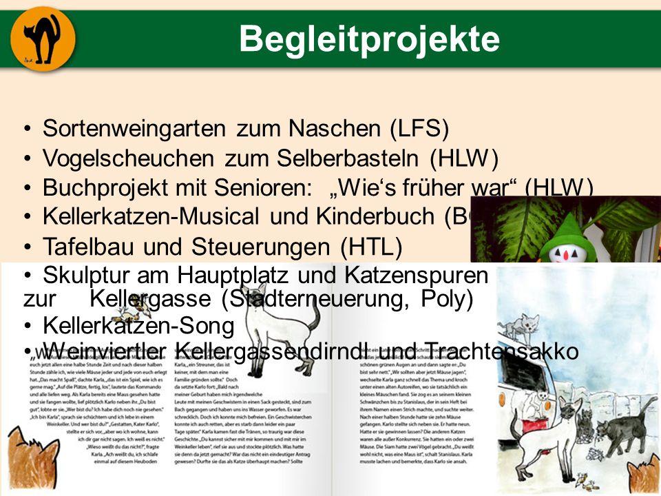 Begleitprojekte Sortenweingarten zum Naschen (LFS) Vogelscheuchen zum Selberbasteln (HLW) Buchprojekt mit Senioren: Wies früher war (HLW) Kellerkatzen