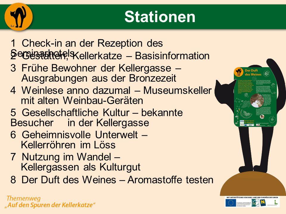 Stationen Check-in an der Rezeption des Seminarhotels Gestatten, Kellerkatze – Basisinformation Frühe Bewohner der Kellergasse – Ausgrabungen aus der