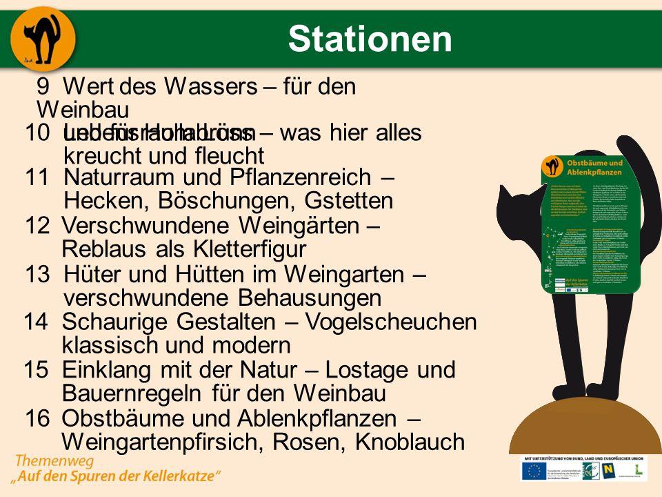 Stationen Wert des Wassers – für den Weinbau und für Hollabrunn Lebensraum Löss – was hier alles kreucht und fleucht Verschwundene Weingärten – Reblau