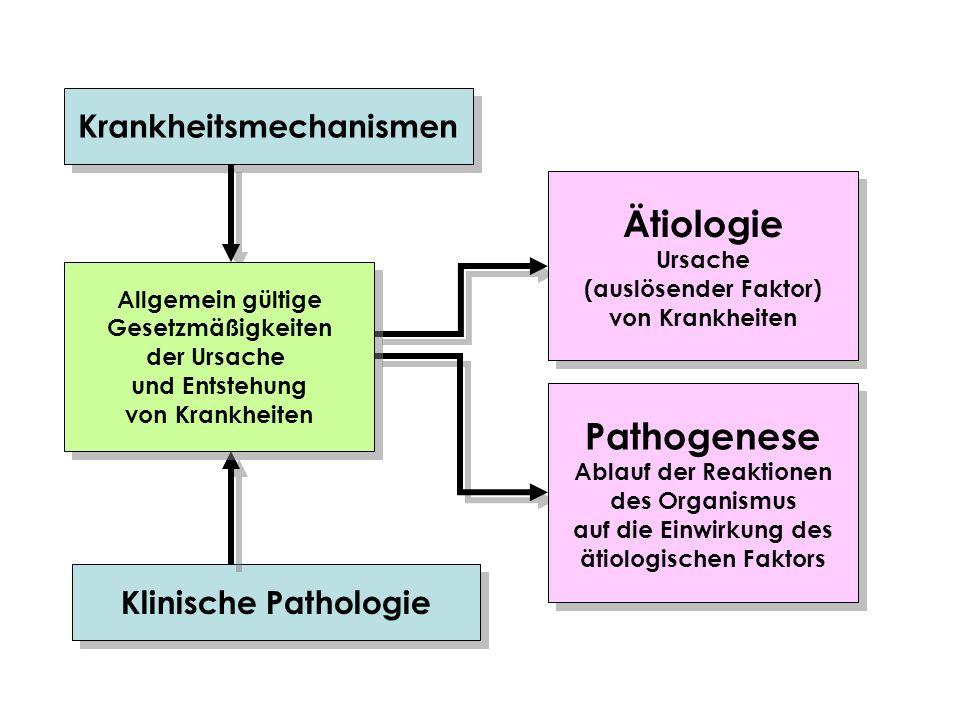 Krankheitsmechanismen Klinische Pathologie Ätiologie Ursache (auslösender Faktor) von Krankheiten Ätiologie Ursache (auslösender Faktor) von Krankheit