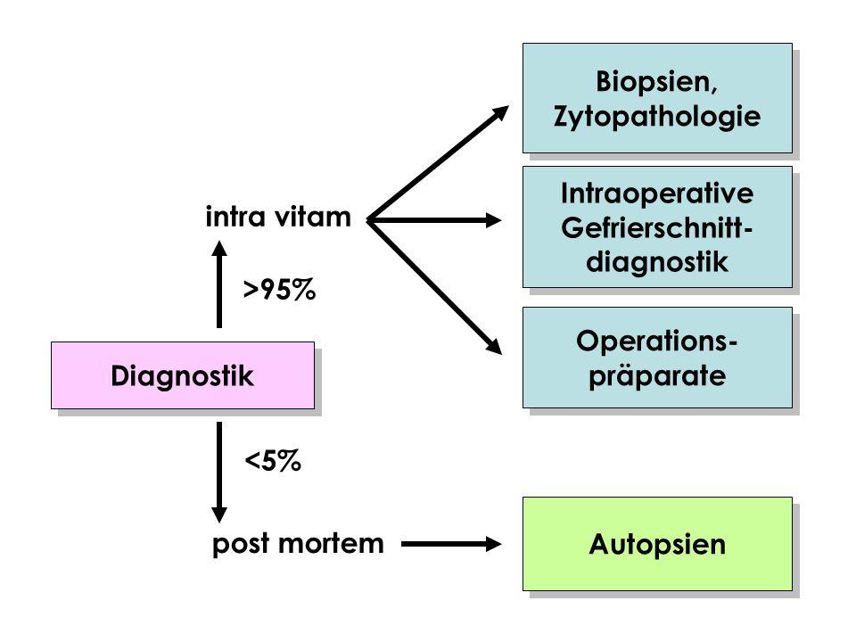 Diagnostik Biopsien, Zytopathologie Biopsien, Zytopathologie Intraoperative Gefrierschnitt- diagnostik Intraoperative Gefrierschnitt- diagnostik Opera