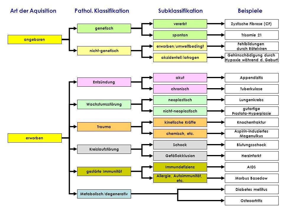angeboren Entzündung Kreislaufstörung Wachstumsstörung Trauma erworben nicht-genetisch erworben/umweltbedingt Zystische Fibrose (CF) nicht-neoplastisc