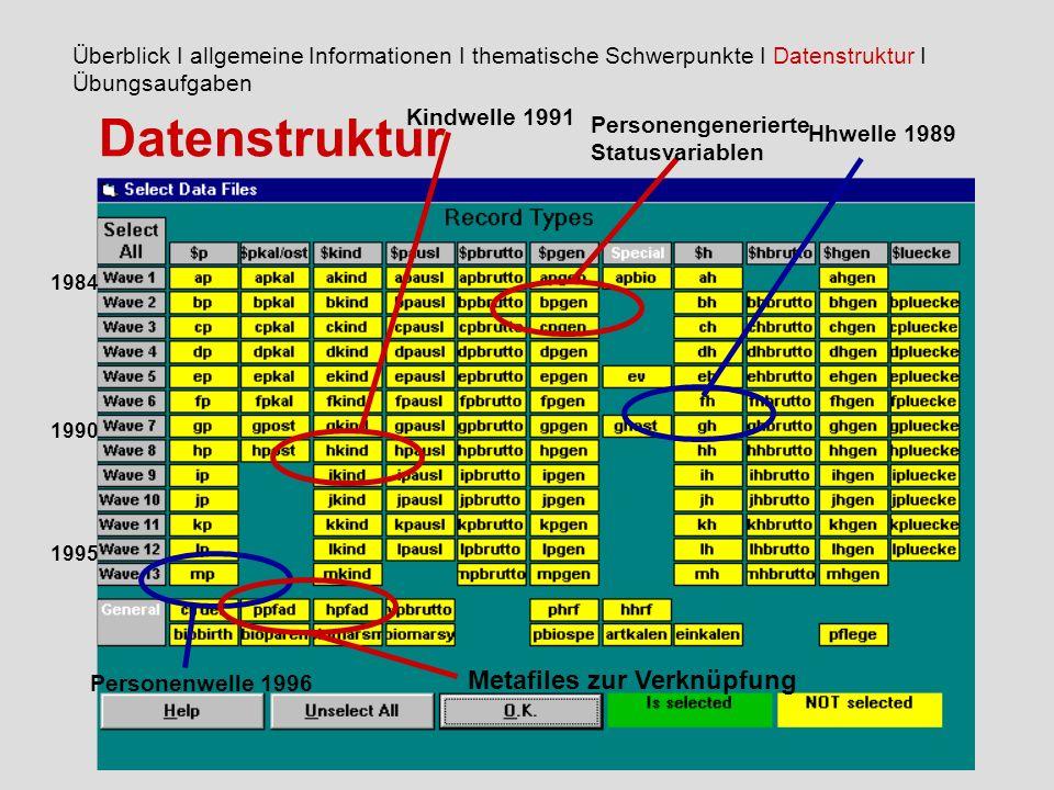 Datenstruktur Überblick I allgemeine Informationen I thematische Schwerpunkte I Datenstruktur I Übungsaufgaben Hhwelle 1989 Kindwelle 1991 Personenwelle 1996 Personengenerierte Statusvariablen 1984 1990 1995 Metafiles zur Verknüpfung