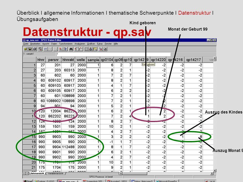 Datenstruktur - qp.sav Überblick I allgemeine Informationen I thematische Schwerpunkte I Datenstruktur I Übungsaufgaben Kind geboren Monat der Geburt 99 Auszug des Kindes Auszug Monat 99