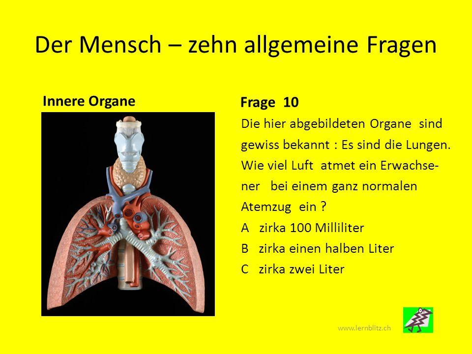 Der Mensch – zehn allgemeine Fragen www.lernblitz.ch Mit diesem Folien-Bilderquiz (Powerpoint ppt.) kannst du überprüfen, wie weit dein Anatomie Wissen schon reicht.