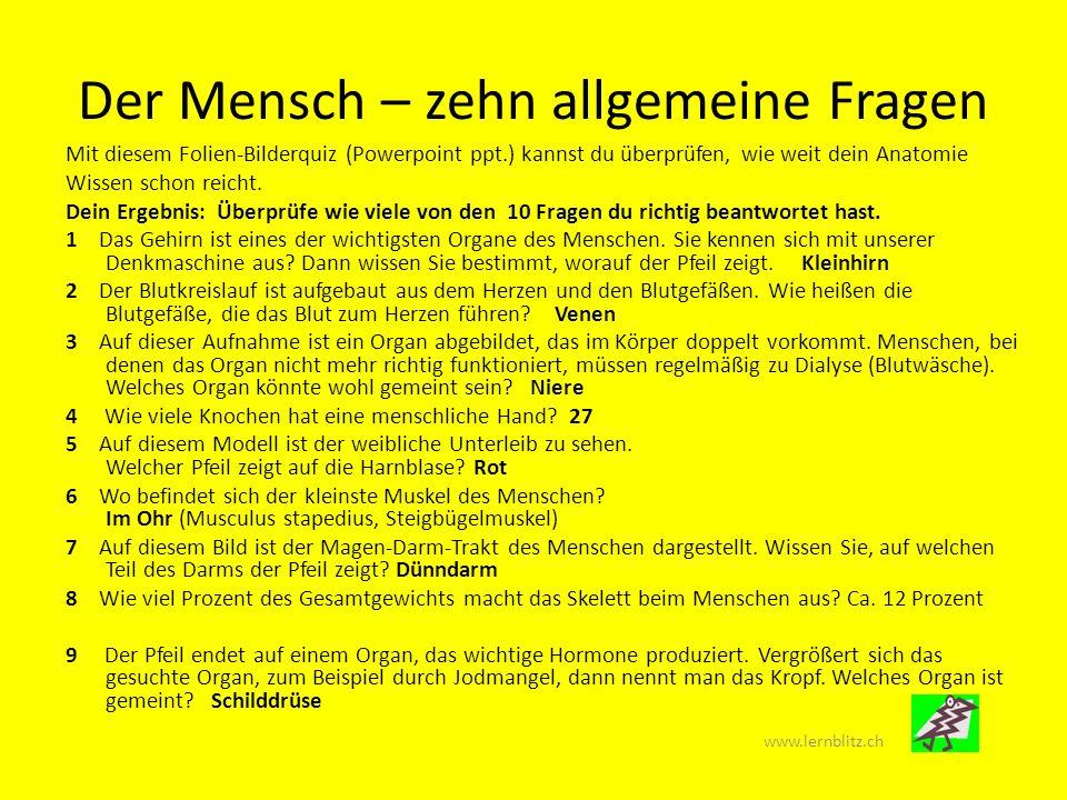 Der Mensch – zehn allgemeine Fragen www.lernblitz.ch Mit diesem Folien-Bilderquiz (Powerpoint ppt.) kannst du überprüfen, wie weit dein Anatomie Wisse