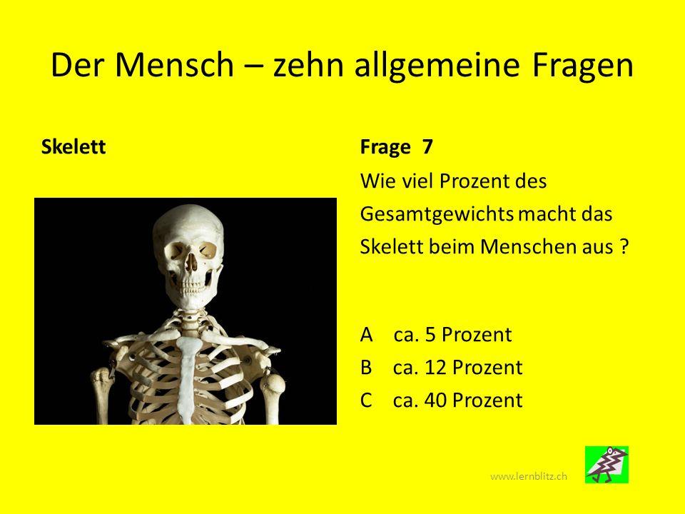 Der Mensch – zehn allgemeine Fragen Innere Organe Frage 9 Der Pfeil endet auf einem Organ, das wichtige Hormone produziert.
