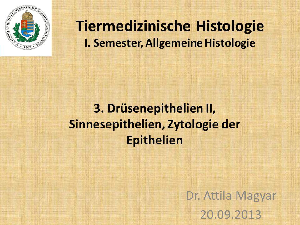 Tiermedizinische Histologie I. Semester, Allgemeine Histologie Dr. Attila Magyar 20.09.2013 3. Drüsenepithelien II, Sinnesepithelien, Zytologie der Ep