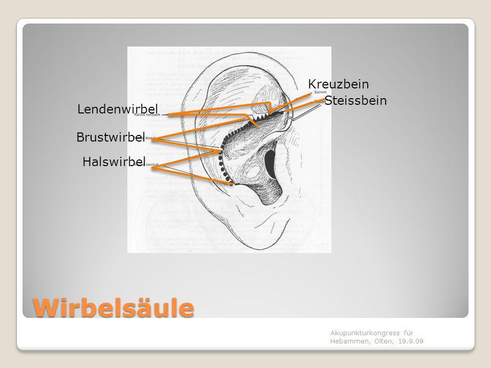Vorgehen Narbenlokalisierung Vorgehen in vier Schritten 1.