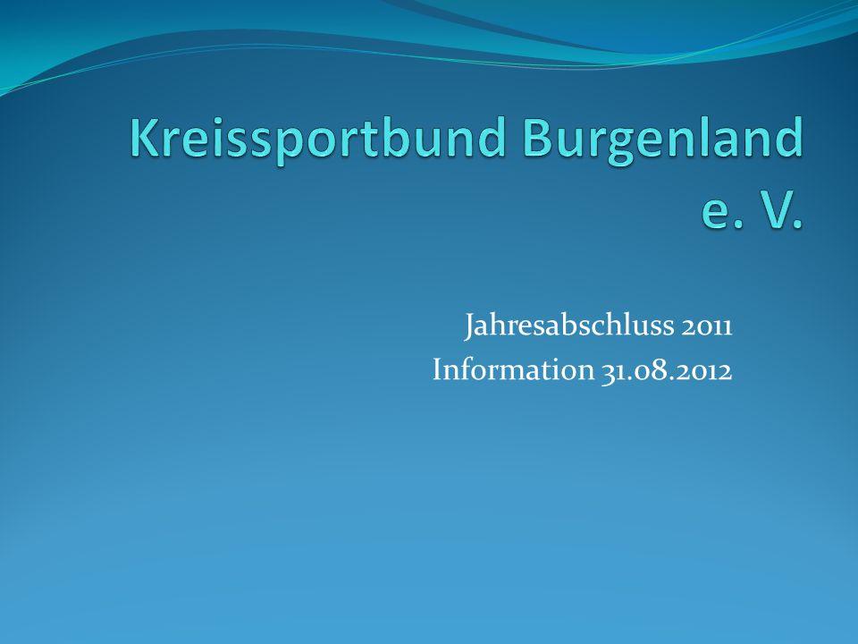 Jahresabschluss 2011 Information 31.08.2012