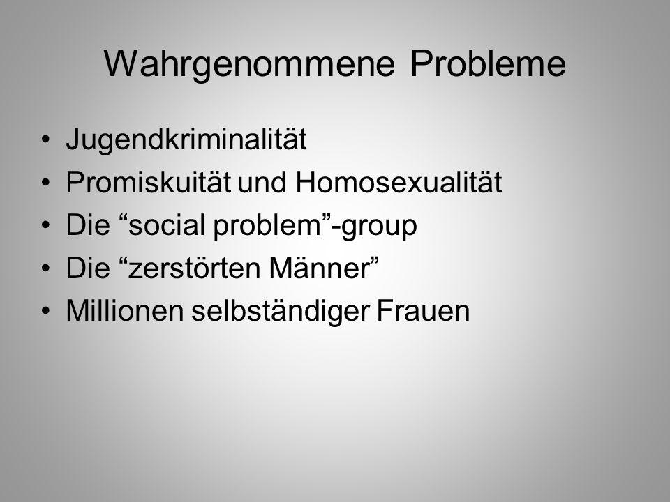Wahrgenommene Probleme Jugendkriminalität Promiskuität und Homosexualität Die social problem-group Die zerstörten Männer Millionen selbständiger Fraue